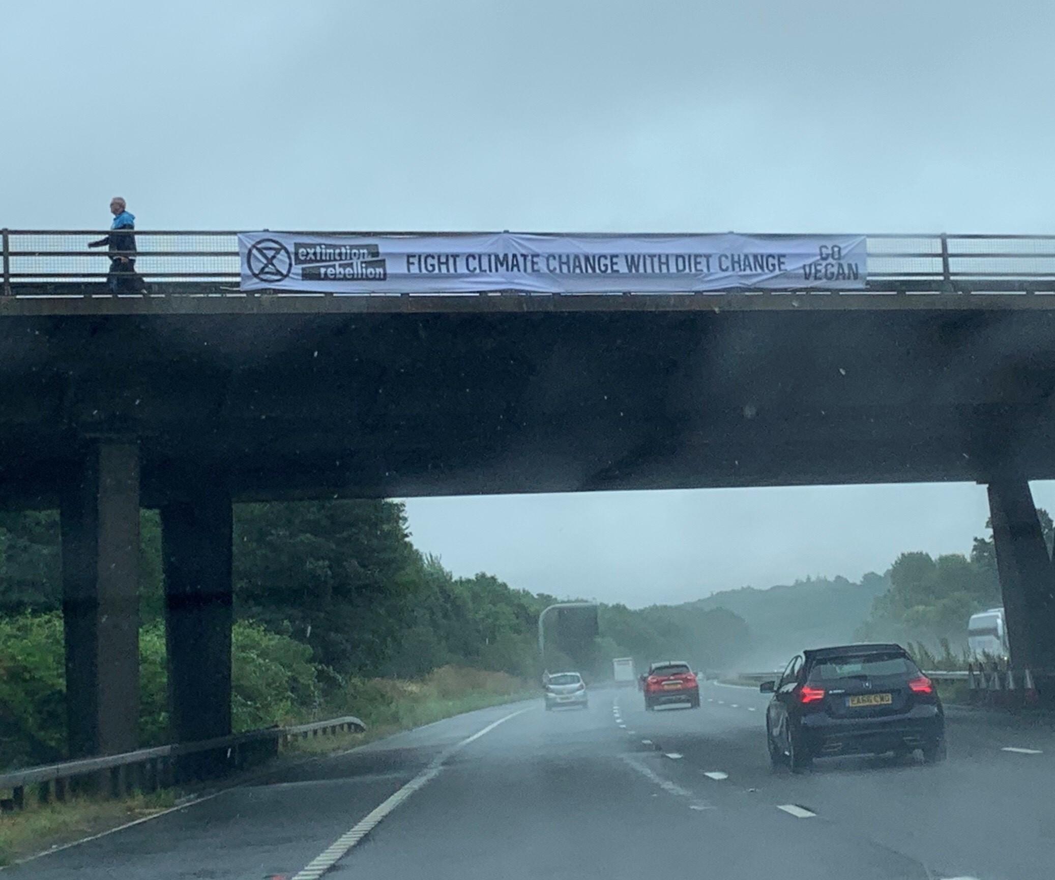 Swindon activists put up banners urging to 'go vegan'