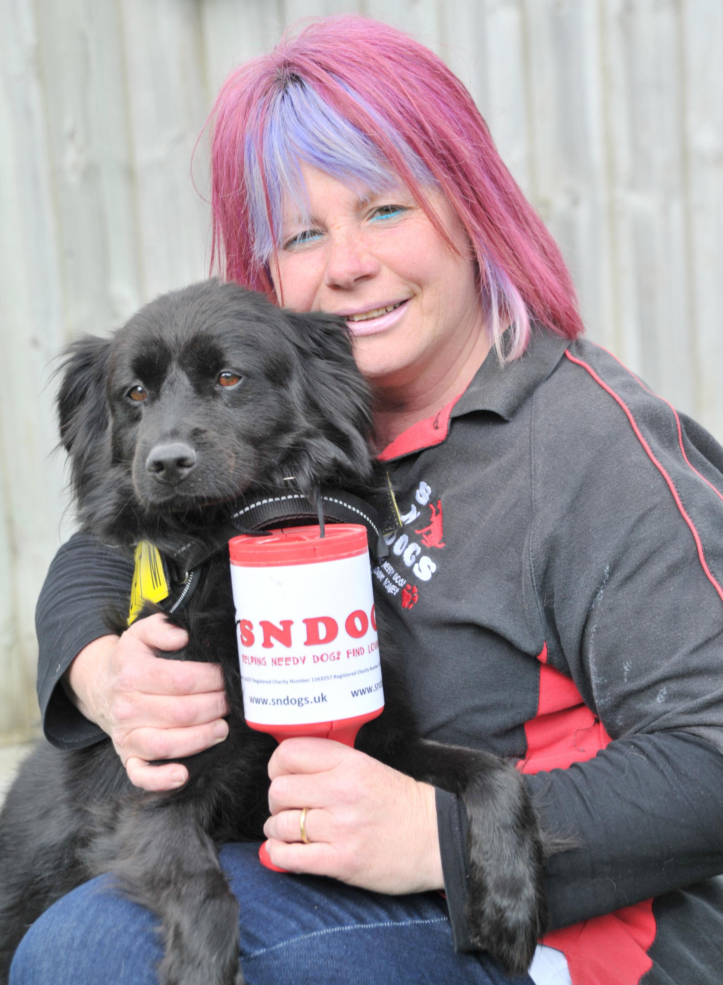 Can you help feed SNDog's hungry hounds?