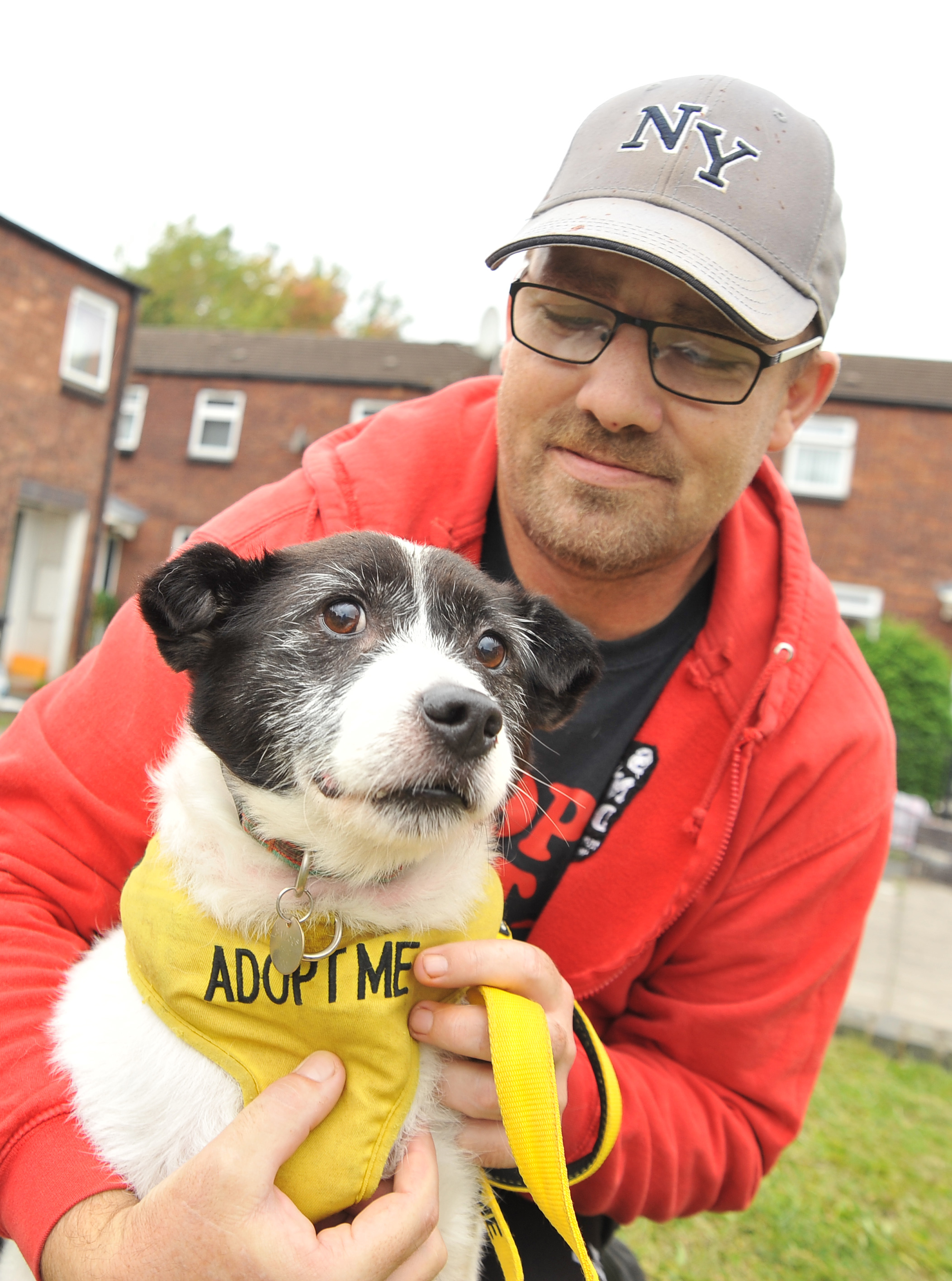 Can you help Swindon's SNDogs find this ex-street dog his forever home?