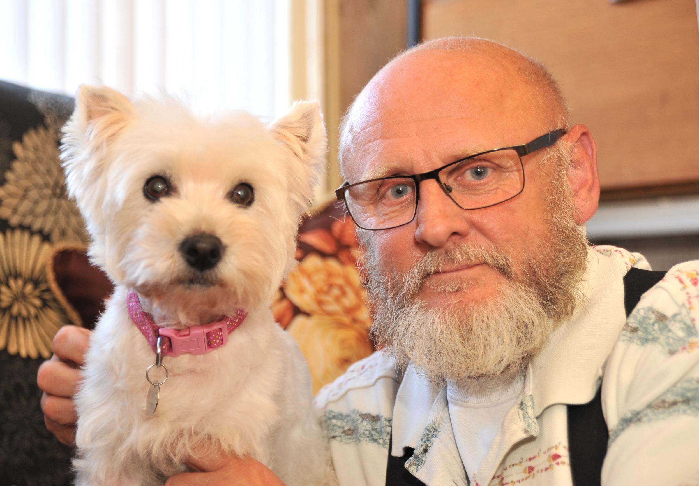 Help SNDogs' elderly Westie find her final forever home