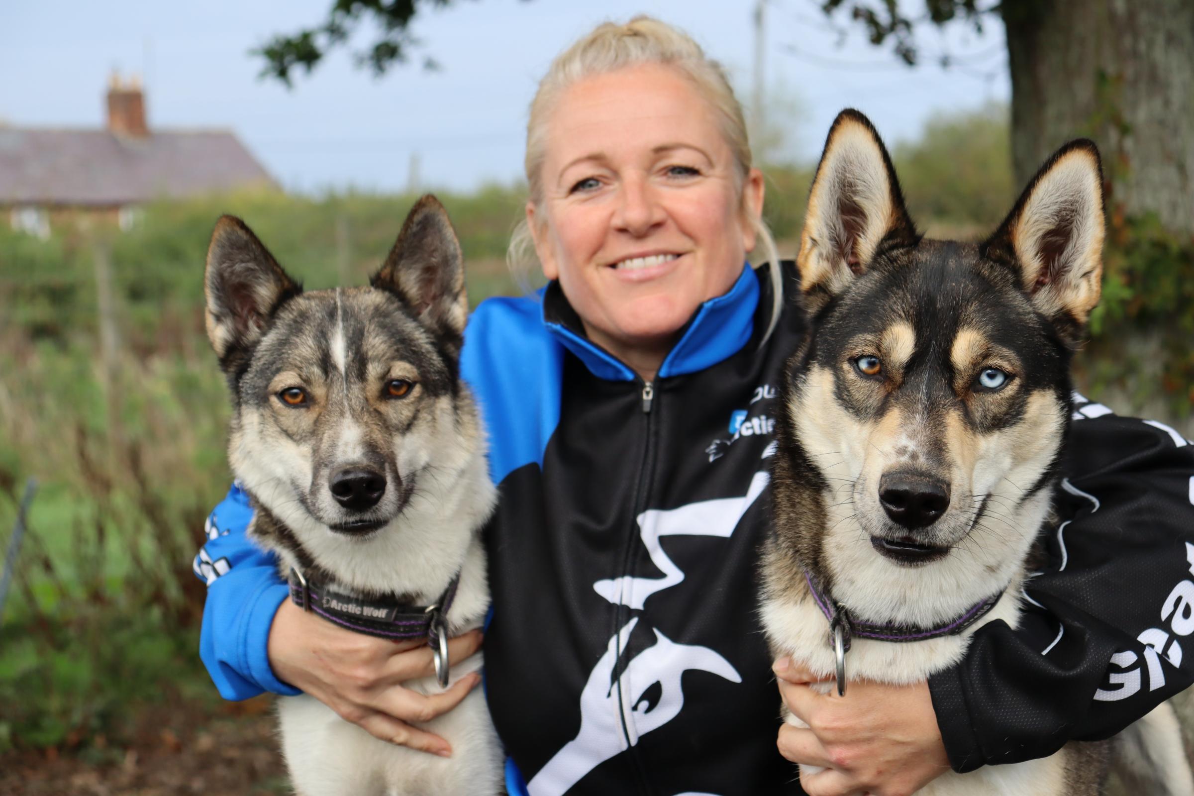Swindon dog trainer takes part in world dog sledding championship
