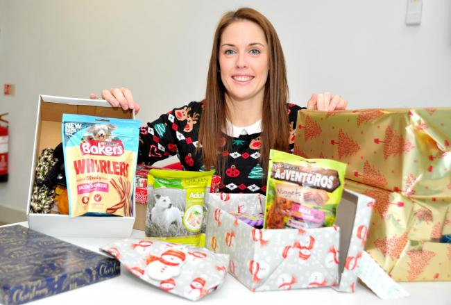 Sarah Gagen is giving out Christmas shoe boxes for cats and dogs in shelters
