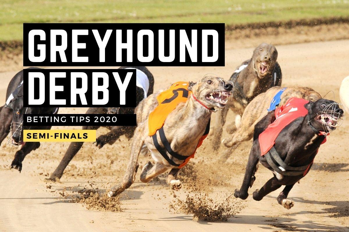 Irish greyhound st leger betting tips pubg betting