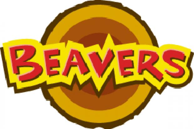 Help Wanted - Beaver Scout Leaders