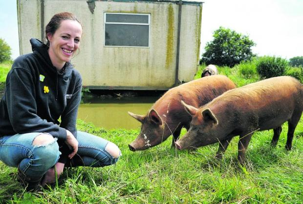 Rebecca Jones with her free range pigs