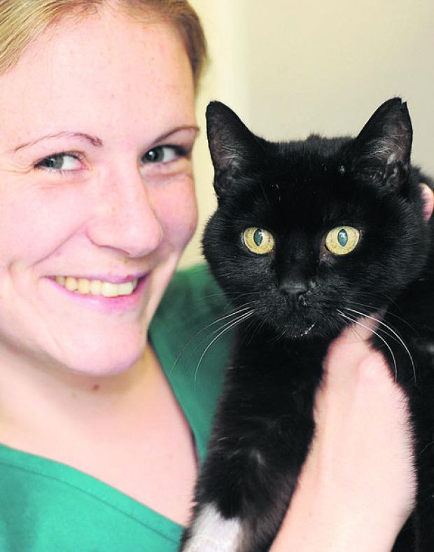 The rescued cat with Shaw Vets nurse Natalie Hudson