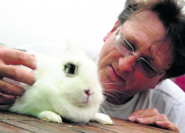 Hunting for the owner John Warwick  with the baby rabbit found on a busy main road in central Swindon   Picture: DAVE COX