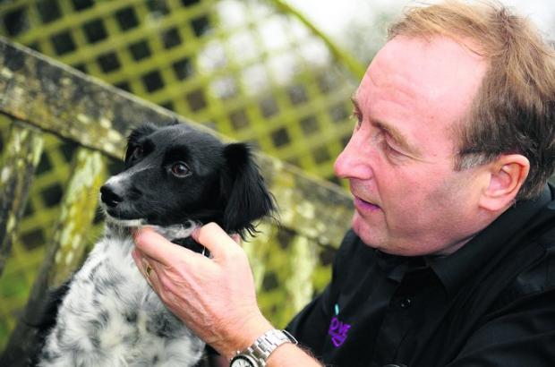 Home at last Drove Vets practice manager Martin Read with Fifi, the dog he rescued from Cyprus Picture: DAVE COX