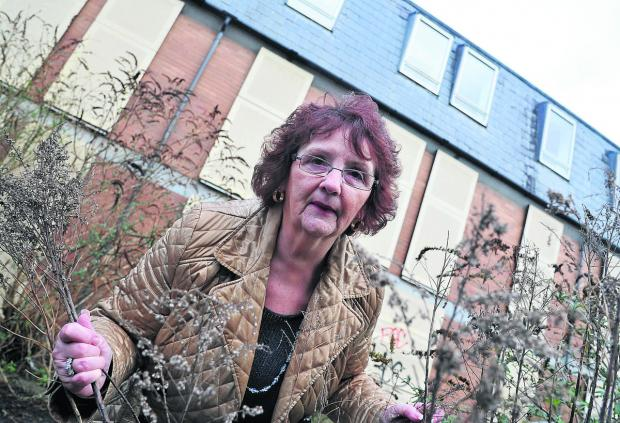 Swindon Advertiser: Bath Road B&B owner Margaret Byrne is appalled at the state of a neighbouring property which has been left vacant for seven years and turned into a tipping site and drug den