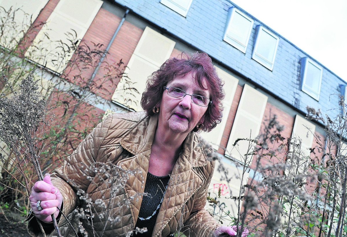 Bath Road B&B owner Margaret Byrne is appalled at the state of a neighbouring property which has been left vacant for seven years and turned into a tipping site and drug den