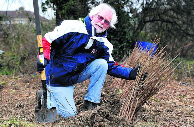 Steve Thompson will be helping to plant more than  1,000 trees at Kembrey Grass on February 15