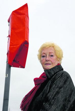 Coun Vera Tomlinson says plans for 350 homes deserve consideration