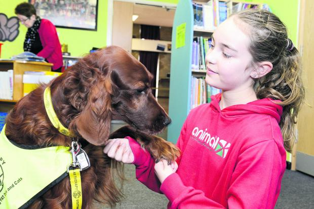 Red setter Ruby has a chat with Ruskin Junior School pupil Libby