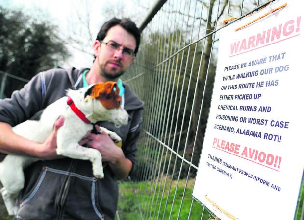 Martin Amor with his dog, Colin, who may have contracted Alabama Rot