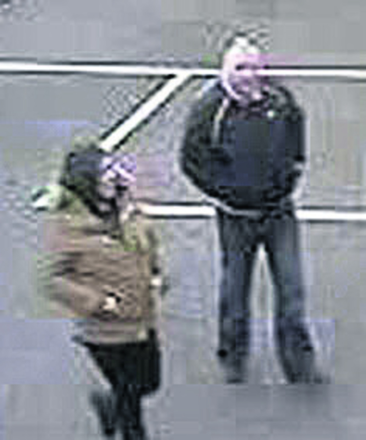 Van theft pair sought by police