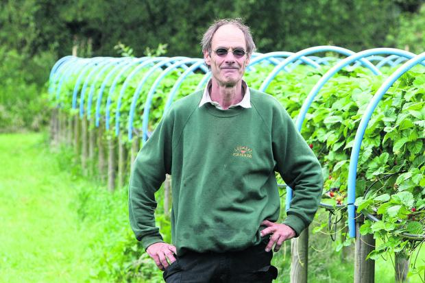 Owner Norman Parry at Lotmead Farm, near Swindon, which is famous for its strawberry crop