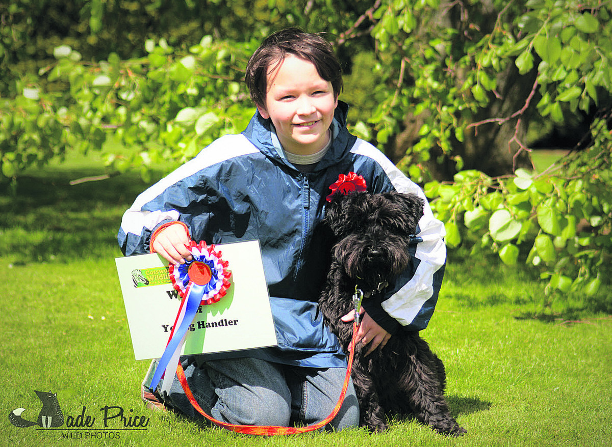 Dog show contestants go barking mad