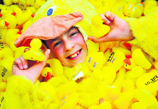 Joseph Walker gets lost in a sea of yellow ducks ahead of the annual race