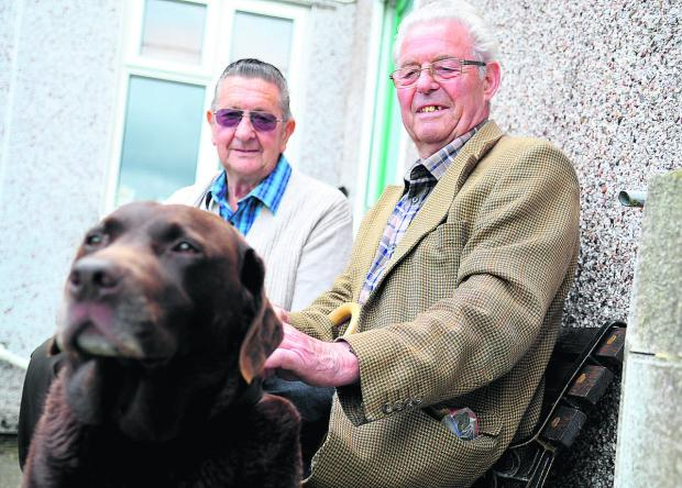 Gary and Donald Embling, who have type 2 diabetes, with their dog Hartley