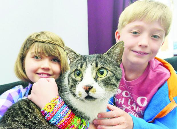 Hope and Charlie with Bob the cat