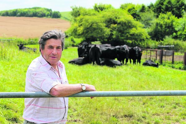 Richard Green with cattle that escaped after the gate was left open by walkers