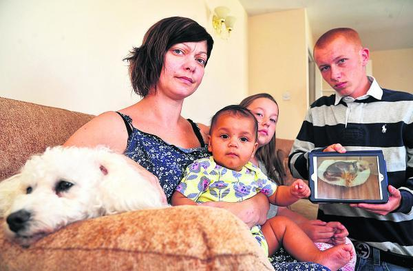 From left, Missy the dog, Marie Burns, Mia Burns, Francesca Burns and Tom Davies holding a picture of Pepe who was killed in the attack. Picture: DAVE COX