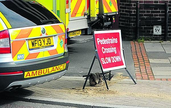 Woman's plea after Regent Circus accident