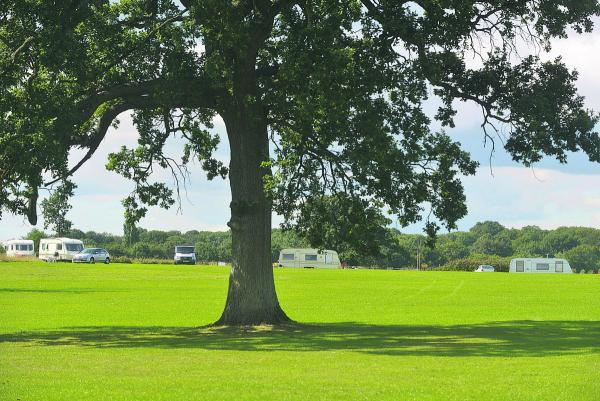 Travellers set up camp at Lydiard Park