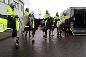 Police horses 'attacked' during Swindon Town and Bristol City derby