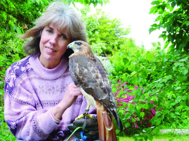 Kathy Ratcliffe imagined owning birds of prey as a child and it became reality