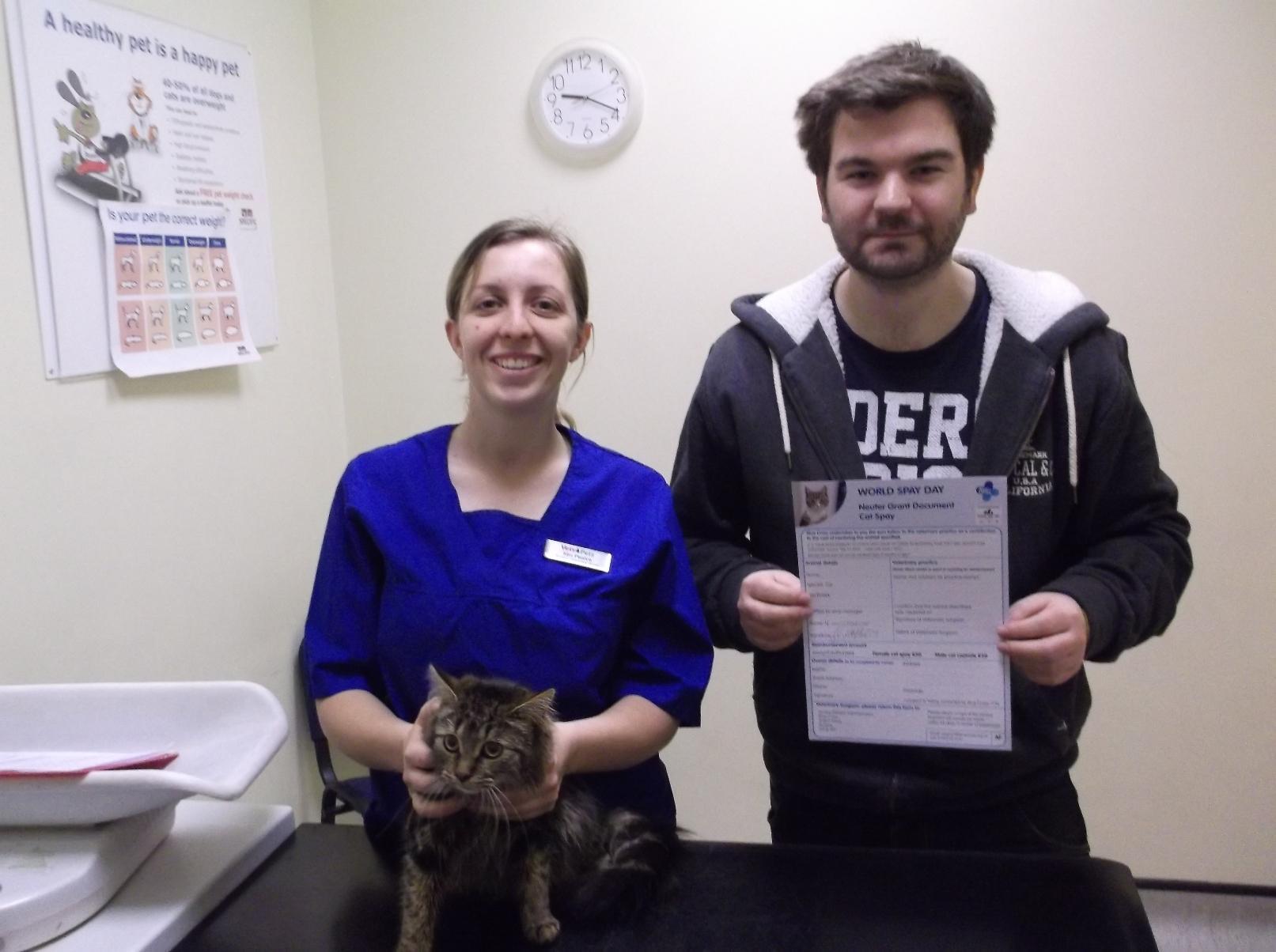 Voucher help to get pet cats neutered as Blue Cross teams up with vet |  Swindon Advertiser