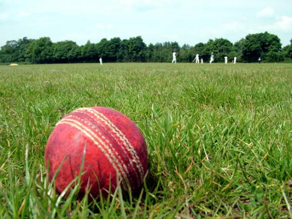 CRICKET: Goodwin's quick-fire brace gets the County back on track