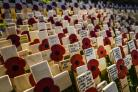 Lydiard Park Field of Remembrance. Picture by Ben Birchall/PA Wire