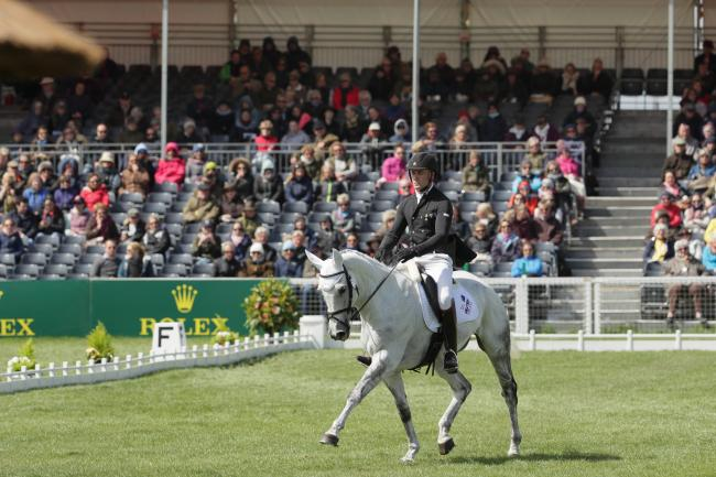 EQUESTRIAN: Tapner looks to reign with King