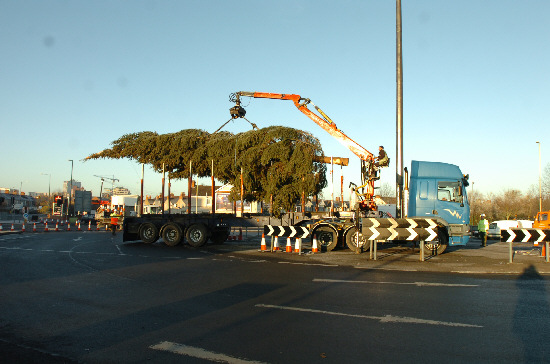 Attempting to install the tree at the Magic Roundabout on Sunday