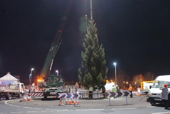 Magic tree spreads festive cheer