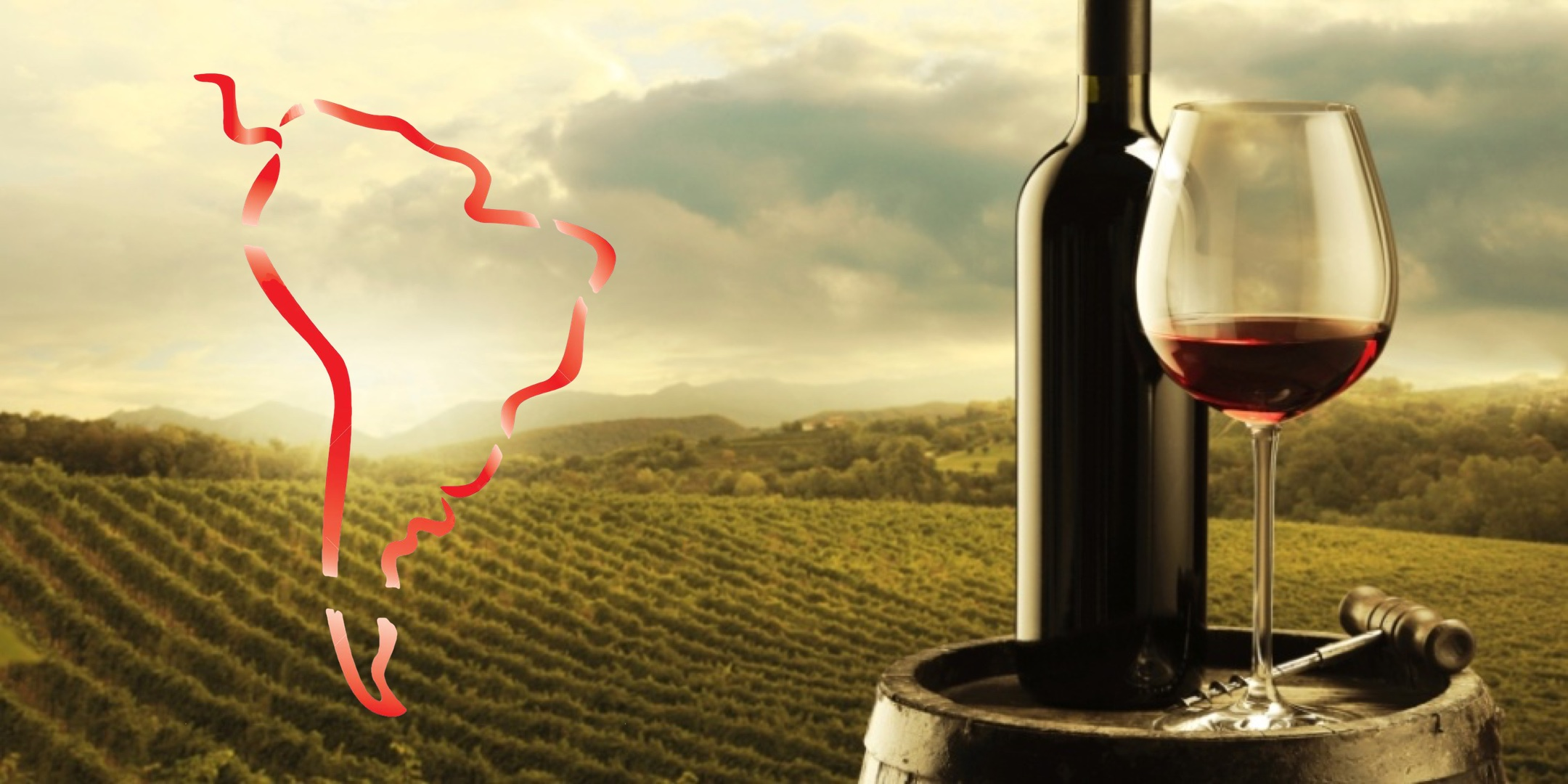 South American Wine Adventure