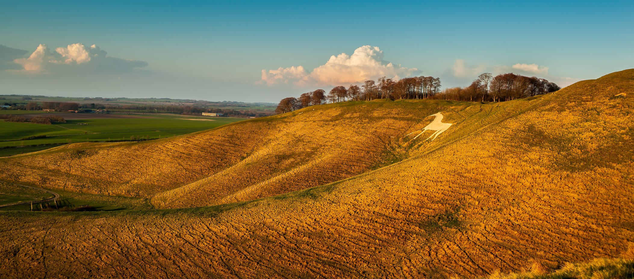 Michaela Gainey's stunning picture of the Cherhill White Horse