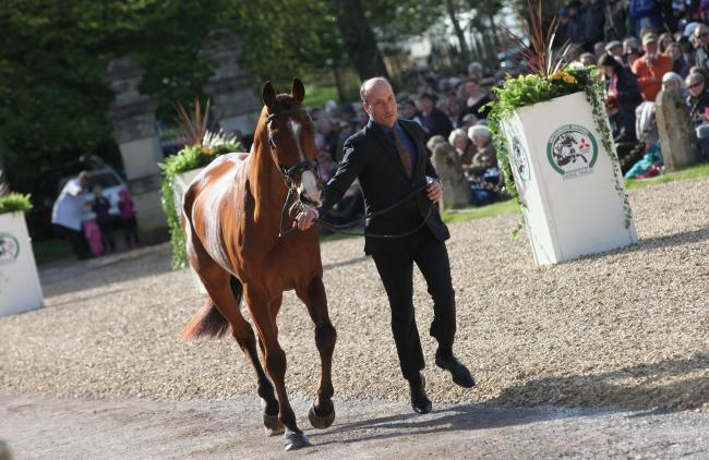 Tim Price with Ringwood Sky Boy during the first horse inspection at the 2018 Badminton Horse Trials. Picture: TIM CRISP.