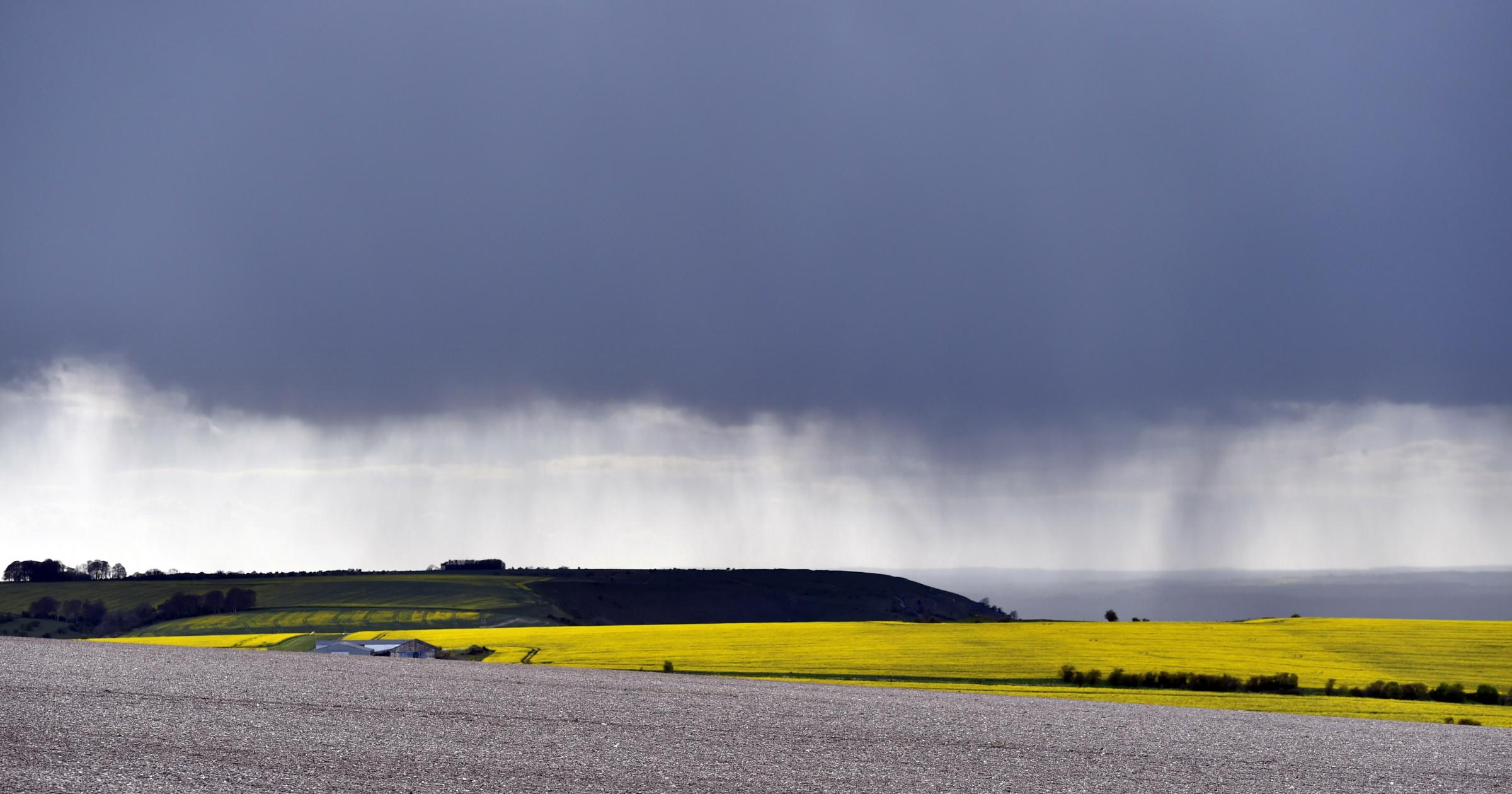 Storm Clouds and Rain fall onto Edington Hill viewed from Salisbury Plain. Pics by Diane Vose DV3068/01.