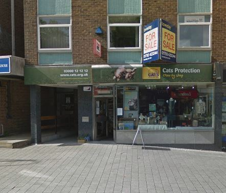 Cats Protection Shop On Regent Circus To Close Swindon Advertiser